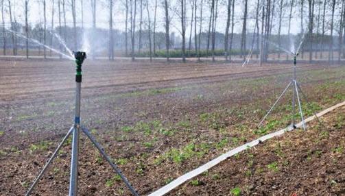 景观雾化及园林浇灌